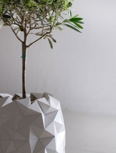 Origami pot plant grows studio
